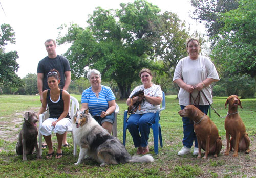 Group Dog Training Programs
