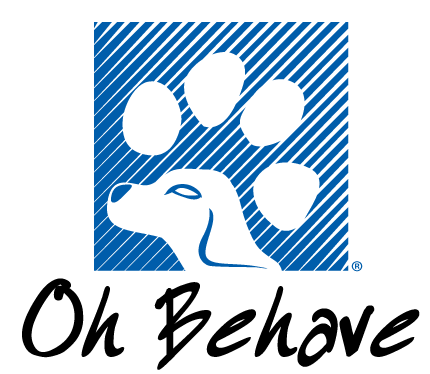 Puppy & Dog Trainer - Fort Lauderdale