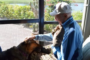 Therapy dog visit to 92 year old World War II veteran