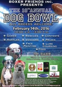 2016 dog bowl