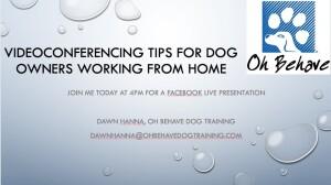 Videoconferencing tips for dog owne